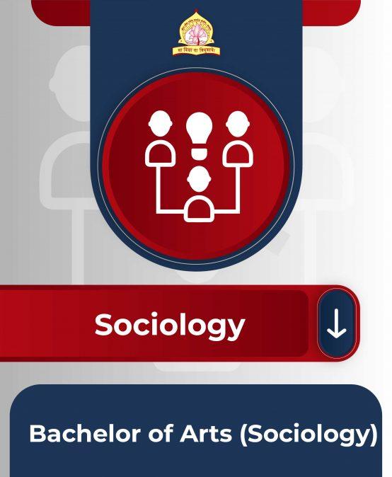 Bachelor of Arts (Sociology)