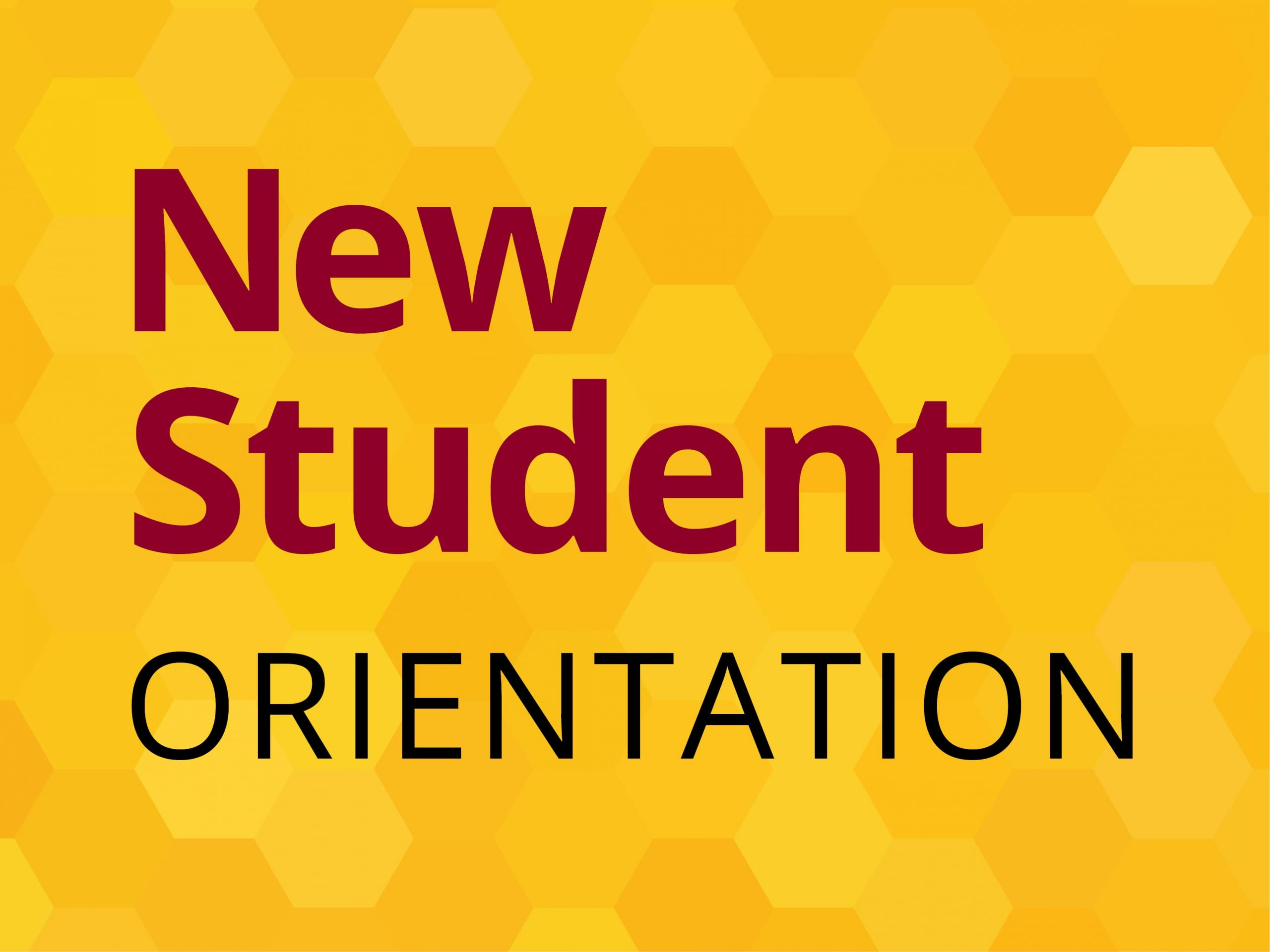 Orientation Program of First Year Student Was Organised in August